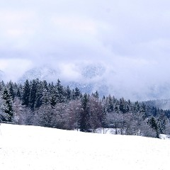 Aktiv im Winter